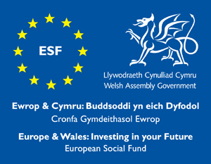 Business Language Services SKILLS GROWTH WALES: FUNDING FOR TRAINING