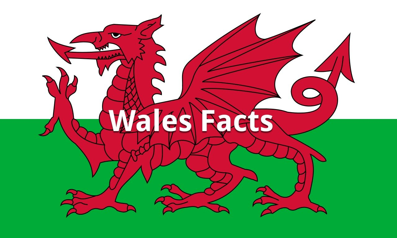Business Language Services Wales: Some lesser known interesting facts